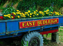 East Budleigh Decorated Cart